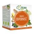 ZIELNIK DOZ Dbam o odporność, herbatka ziołowa, 2 g, 10 saszetek
